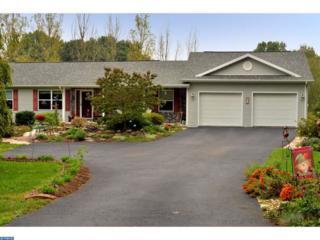 33 Pine Cone Drive, Pine Grove, PA 17963 (#6871707) :: Ramus Realty Group