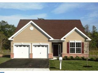2 Ernst Court, Mays Landing, NJ 08330 (MLS #6871730) :: The Dekanski Home Selling Team