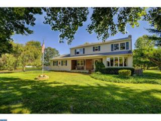 195 South Lane, Princeton Junction, NJ 08550 (MLS #6873496) :: The Dekanski Home Selling Team