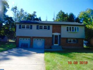 25 Llanfair Lane, Ewing, NJ 08618 (MLS #6874122) :: The Dekanski Home Selling Team