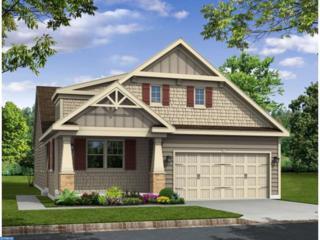 1 Granite Lane, Carneys Point, NJ 08069 (MLS #6874639) :: The Dekanski Home Selling Team