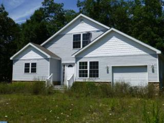 000 Autumn Lane, Egg Harbor Twp, NJ 08234 (MLS #6874756) :: The Dekanski Home Selling Team