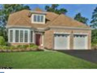 8 Ernst Court, Mays Landing, NJ 08330 (MLS #6876444) :: The Dekanski Home Selling Team