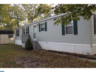 44 Fir Lane, EASTAMPTON TWP, NJ 08060 (MLS #6876726) :: The Dekanski Home Selling Team