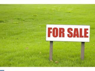614 Chesterfield Arneytown Road, Chesterfield, NJ 08515 (MLS #6878804) :: The Dekanski Home Selling Team