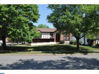 15 David Drive, Ewing, NJ 08638 (MLS #6881017) :: The Dekanski Home Selling Team