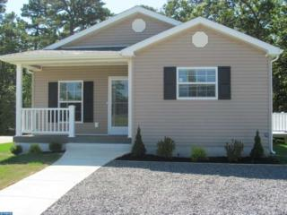 10 Redwood Lane, Weymouth, NJ 08330 (MLS #6884750) :: The Dekanski Home Selling Team