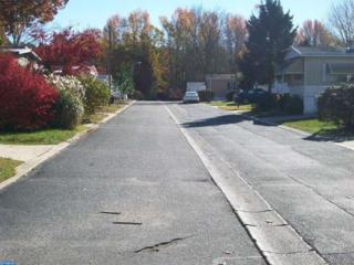 327 Jasmine Lane, Williamstown, NJ 08094 (MLS #6890261) :: The Dekanski Home Selling Team