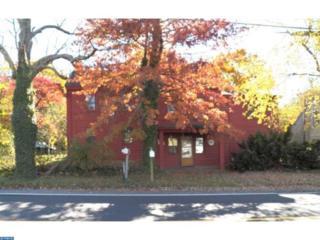 81 Fairton Millville Road, Bridgeton, NJ 08302 (MLS #6894618) :: The Dekanski Home Selling Team