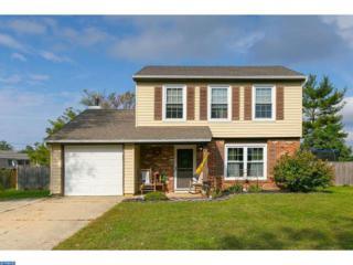 416 Denise Lane, Williamstown, NJ 08094 (MLS #6896962) :: The Dekanski Home Selling Team