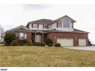 7 Hickory Ln E, Pilesgrove, NJ 08098 (MLS #6896994) :: The Dekanski Home Selling Team