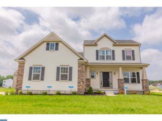 2 Granite Lane, Carneys Point, NJ 08069 (MLS #6897959) :: The Dekanski Home Selling Team
