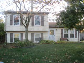 705 Debra Drive, Williamstown, NJ 08094 (MLS #6903270) :: The Dekanski Home Selling Team