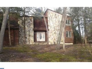 18 Wilderness Drive, Voorhees, NJ 08043 (MLS #6904662) :: The Dekanski Home Selling Team
