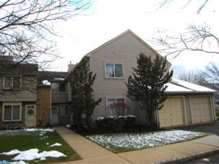 49 Chatham Court, Hightstown, NJ 08520 (MLS #6905224) :: The Dekanski Home Selling Team