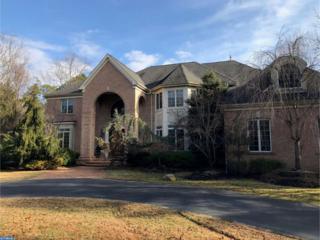21 Elderberry Drive, Medford, NJ 08055 (MLS #6905416) :: The Dekanski Home Selling Team