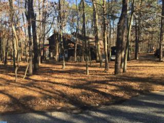 6 Red Oak Drive, Tabernacle, NJ 08088 (MLS #6906236) :: The Dekanski Home Selling Team