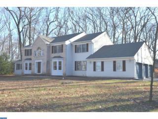 9 Woodland Court, West Windsor, NJ 08550 (MLS #6906549) :: The Dekanski Home Selling Team