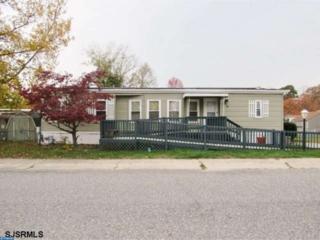 3 Jackson Drive, Millville, NJ 08332 (MLS #6906901) :: The Dekanski Home Selling Team