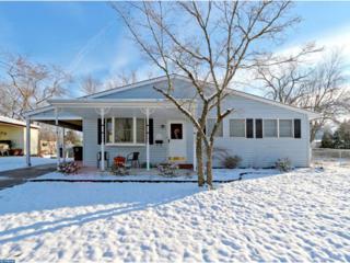 808 Jaguar Road, Lindenwold, NJ 08021 (MLS #6907288) :: The Dekanski Home Selling Team