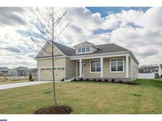 0 Galleria Drive Laurel, Mays Landing, NJ 08330 (MLS #6907975) :: The Dekanski Home Selling Team