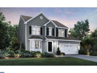0 Galleria Drive Weston, Mays Landing, NJ 08330 (MLS #6907982) :: The Dekanski Home Selling Team