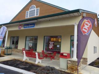 6167 Harding Highway, Mays Landing, NJ 08330 (MLS #6908118) :: The Dekanski Home Selling Team