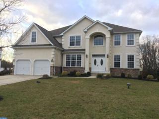 106 Golden Meadow Lane, Sicklerville, NJ 08081 (MLS #6908256) :: The Dekanski Home Selling Team