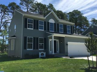 0 Galleria Drive Devon, Mays Landing, NJ 08330 (MLS #6908377) :: The Dekanski Home Selling Team