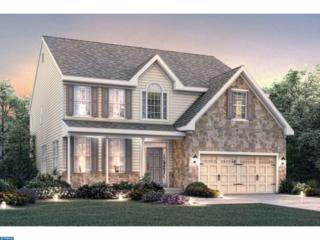 0 Galleria Drive Abington, Mays Landing, NJ 08330 (MLS #6908395) :: The Dekanski Home Selling Team