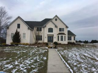 701 Green Lane, Mantua, NJ 08080 (MLS #6908970) :: The Dekanski Home Selling Team