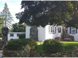 160 Sherron Avenue, Salem, NJ 08079 (MLS #6909847) :: The Dekanski Home Selling Team