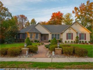 28 Skyline Circle, Sewell, NJ 08080 (MLS #6910153) :: The Dekanski Home Selling Team