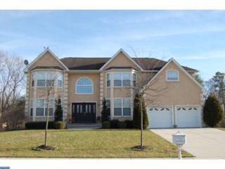 155 Blue Meadow Lane, Winslow, NJ 08081 (MLS #6912590) :: The Dekanski Home Selling Team