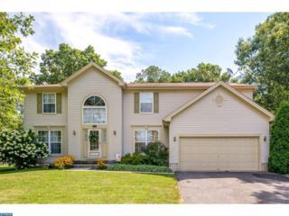 1048 Bonnie Blue Circle, Williamstown, NJ 08094 (MLS #6913774) :: The Dekanski Home Selling Team
