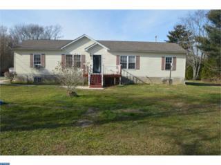 462 N Lincoln Avenue, Vineland, NJ 08361 (MLS #6914426) :: The Dekanski Home Selling Team