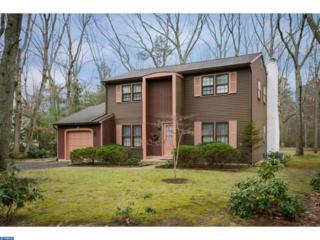 15 Lightning Drive, Medford, NJ 08055 (MLS #6914603) :: The Dekanski Home Selling Team