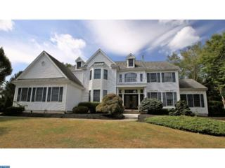 8 Snowbird Court, Princeton Junction, NJ 08550 (MLS #6915330) :: The Dekanski Home Selling Team