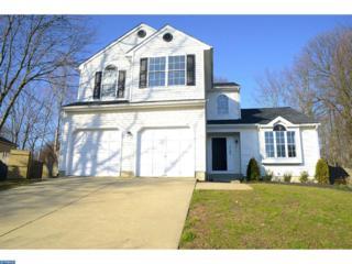 3 Ash Court, Sicklerville, NJ 08081 (MLS #6917950) :: The Dekanski Home Selling Team
