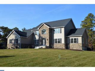 19 Winslow Homer Way, Marlton, NJ 08053 (MLS #6918855) :: The Dekanski Home Selling Team
