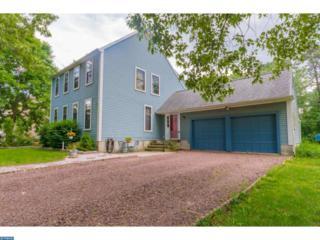 1160 Sassafras Shore Road, Pittsgrove, NJ 08318 (MLS #6919826) :: The Dekanski Home Selling Team