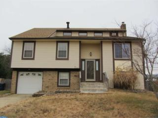 1017 Micawber Drive, Williamstown, NJ 08094 (MLS #6920017) :: The Dekanski Home Selling Team
