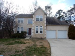 225 Grasmur Turn, Pine Hill, NJ 08021 (MLS #6920125) :: The Dekanski Home Selling Team