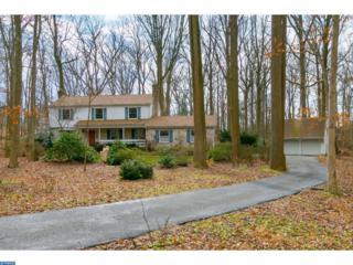 44 Laurel Lane, Pilesgrove, NJ 08098 (MLS #6920685) :: The Dekanski Home Selling Team