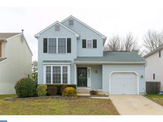 31 Wakefield Road, Atco, NJ 08004 (MLS #6921353) :: The Dekanski Home Selling Team