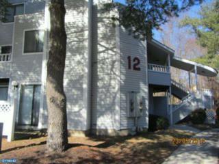 1207 Berwyck Court, Sicklerville, NJ 08081 (MLS #6922199) :: The Dekanski Home Selling Team
