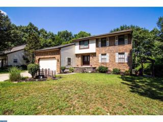 1127 Buttonwood Drive, Cherry Hill, NJ 08003 (MLS #6922719) :: The Dekanski Home Selling Team