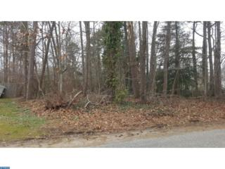 517 Gooseberry Road, Millville, NJ 08332 (MLS #6923114) :: The Dekanski Home Selling Team