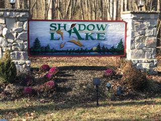 15 Shadow Lake Lane, Shamong, NJ 08088 (MLS #6923431) :: The Dekanski Home Selling Team