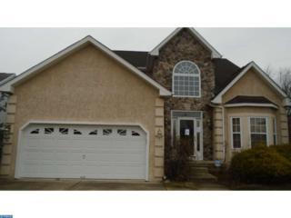 53 Pintail Drive, Glassboro, NJ 08028 (MLS #6924167) :: The Dekanski Home Selling Team